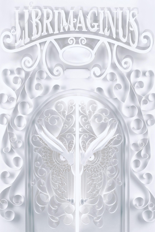 Owl Paper Door